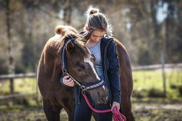 horse girl se