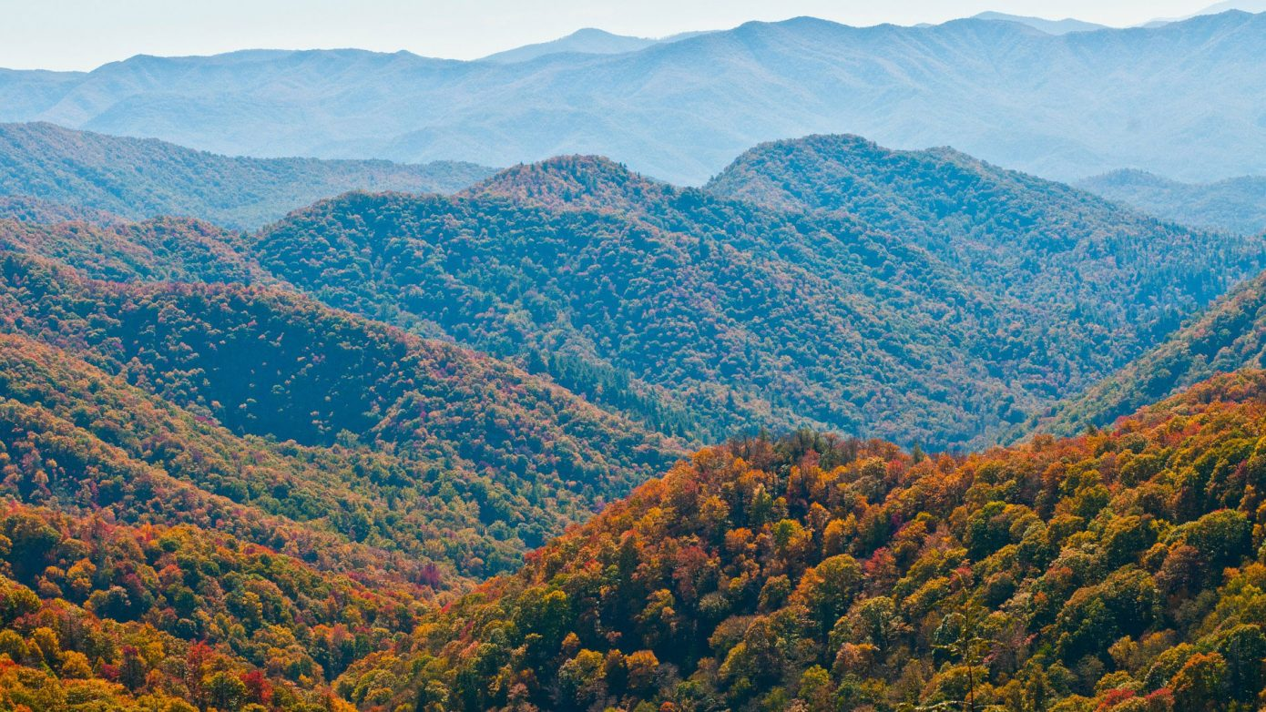 Residential Treatment Centers in North Carolina